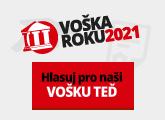 Hlasujte